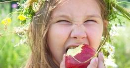 Welche Lebensmittel sind gesund Test?